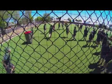 Horsham school fence