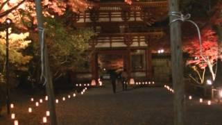 奈良県宇陀市室生、室生寺、2016年11月10日ライトアップ