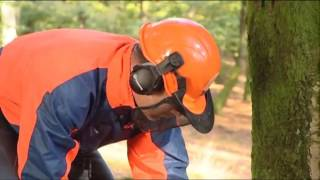 How to work with chainsaws - Felling Trees (part 3)
