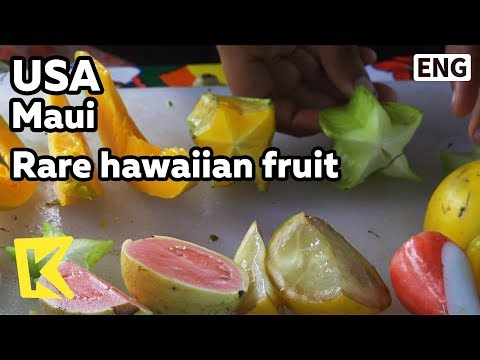 【k】usa-travel-maui[미국-여행-마우이]하와이-희귀한-과일/rare-hawaiian-fruit/hana-village/road/fruit