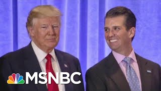 President Donald Trump Campaign And A 'Willingness' To Collude | The Last Word | MSNBC