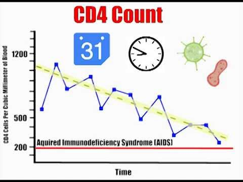 CD4 Count Explained