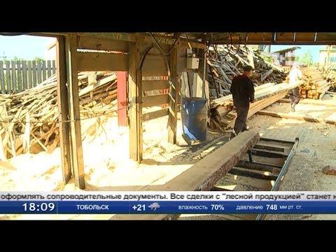 С 1 июля вводятся новые правила перевозки 24-х видов древесины