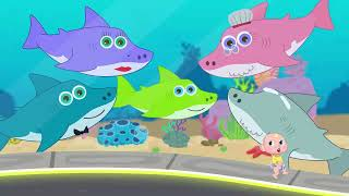 Baby Sharky Family - OFFICIAL LIVE Stream