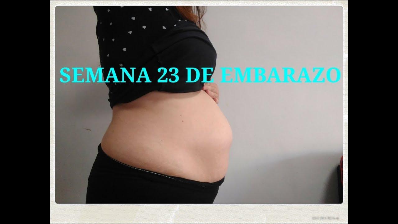 a97fcef3d SEMANA 23 DE EMBARAZO ¿LIQUIDO AMNIÓTICO