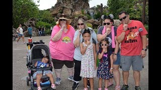 disney world vlog⎮june 12 2018⎮perfect day at animal kingdom