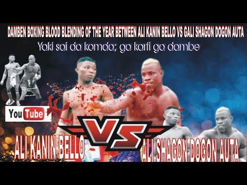 DAMBE BOXING NIGERIAN Ali Kanin Bello Vs GALI SHAGON AUTA