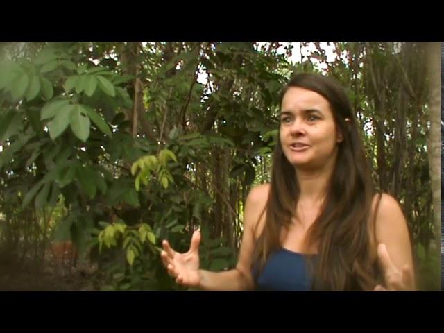 da Mente ao Coração - depoimento Ana Cristina   Reconexão Interior - Autoconhecimento