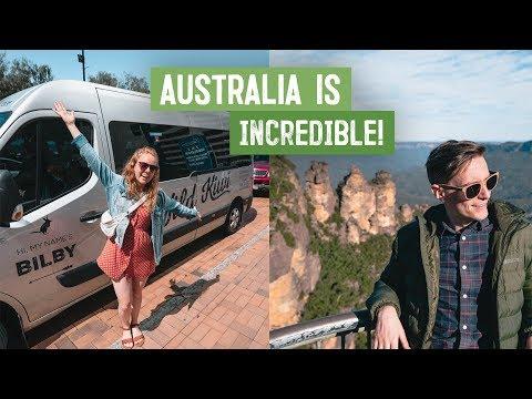 Australian Road Trip BEGINS! - Koalas, Blue Mountains & More 😍  Wild Kiwi Tours / Absolute Aussie