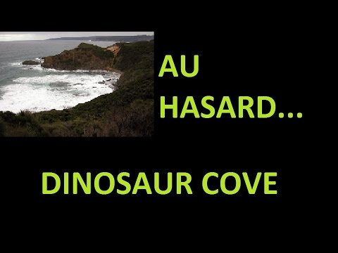 un site fossilifère au hasard#2 - Dinosaur Cove