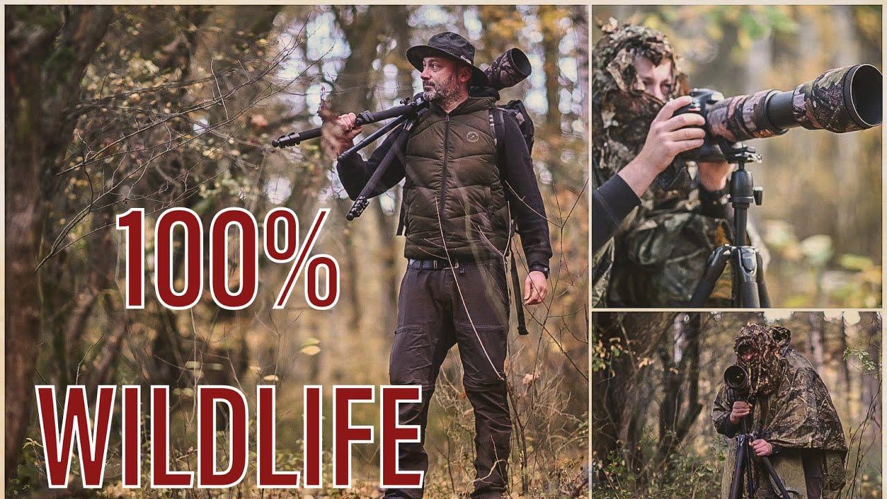 Wildlife - Photography   Rehe   Buntspecht   Vögel   Video Test Nikon Z6 II   cinematic   Tarnung