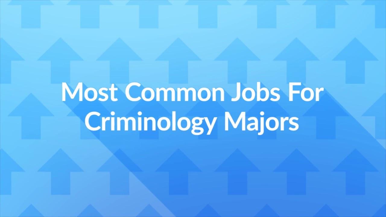 12 Jobs For Criminology Majors The University Network