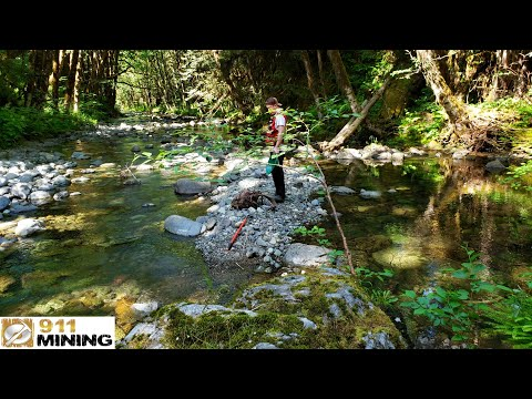 Finding Chunky Gold At The Ultimate Placer Deposit + Bear Chasing Us!
