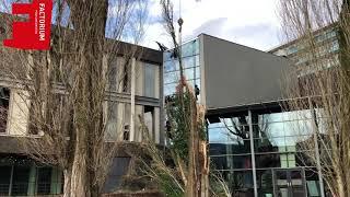 Factorium Podiumkunsten in Tilburg tijdelijk dicht door stormschade: Gelukkig gebeurde het op zondag