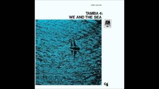 Tamba 4 - The dolphin
