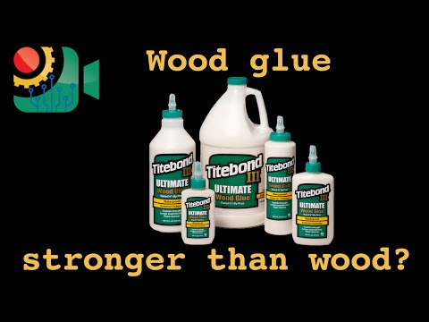 It's Triggy! | Does wood glue bond stronger than wood? 2.0