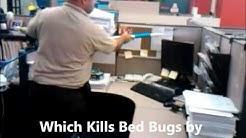 Bed Bugs Exterminator NYC (718) 303 1052 Bed Bugs Exterminator New York