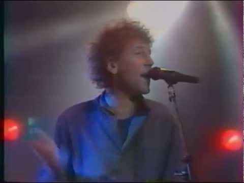 Alain souchon - Poulailler's song