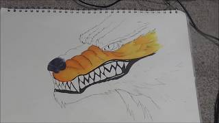 Drawing the Nine Tailed Fox (Naruto) (Copic Ciao) &25 hf4hs
