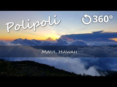 Polipoli Spring State Recreation Area 8k 360 Sunset Time-lapse
