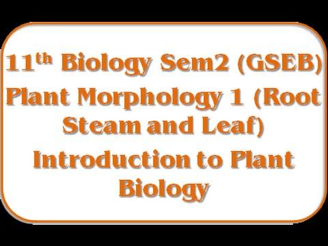 Introduction Of Plant Biology 11th Biology Semester-2 Jolly Joshipura Gseb