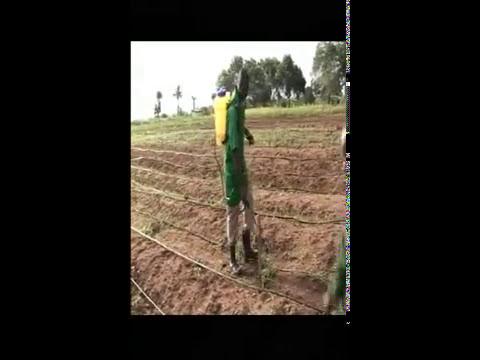 LAGOS DOCUMENTARY: AGRIC YES EMPOWERING THE YOUTHS