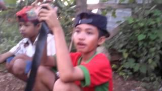 Video lucu pengen tawuran