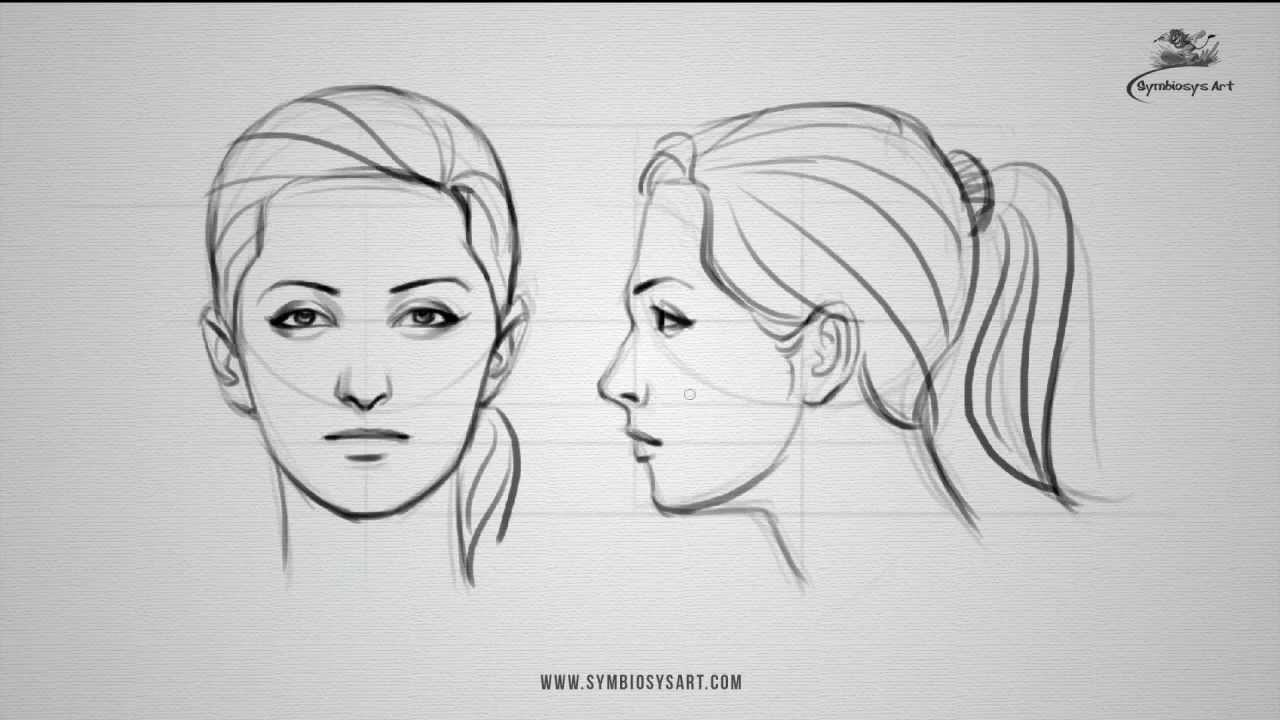 How to draw a female face - front and side view - YouTube