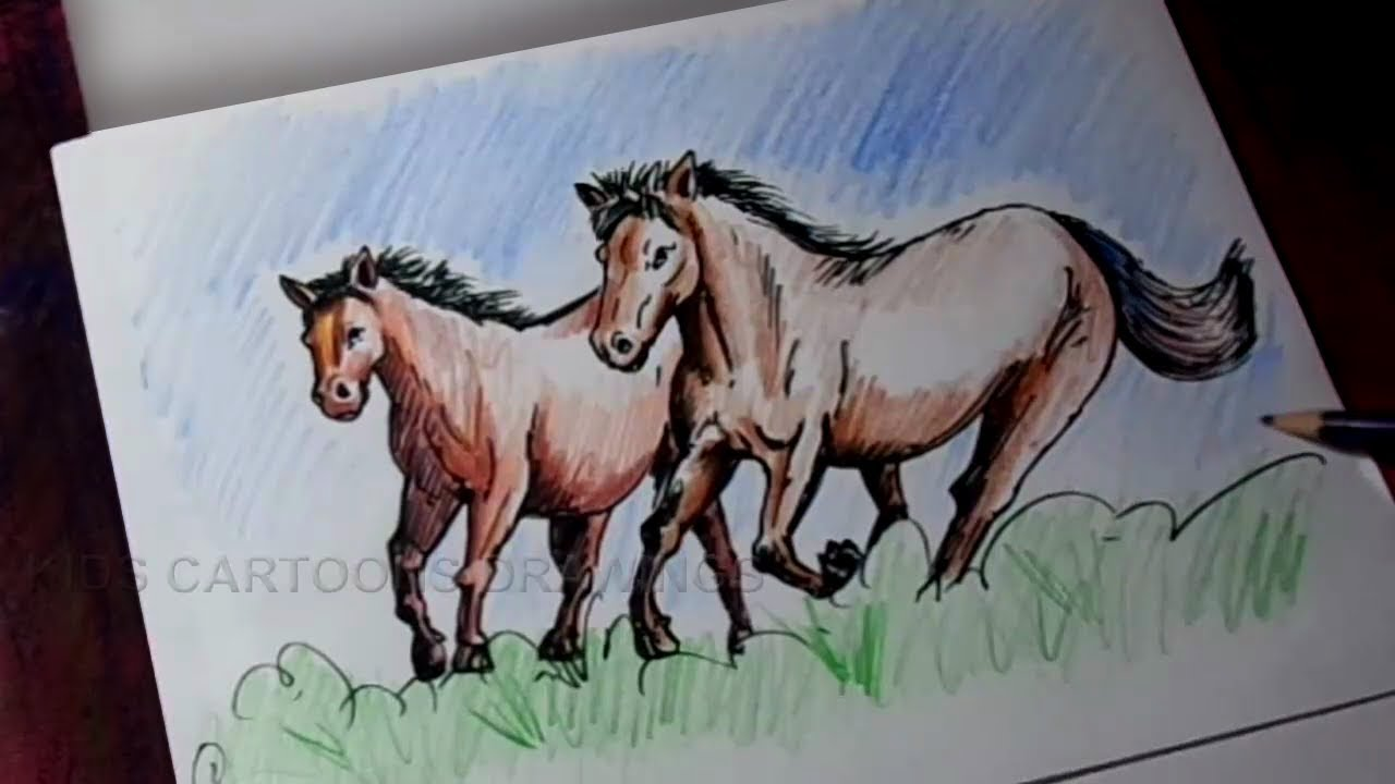 Cartoon Horse Drawing For Kids