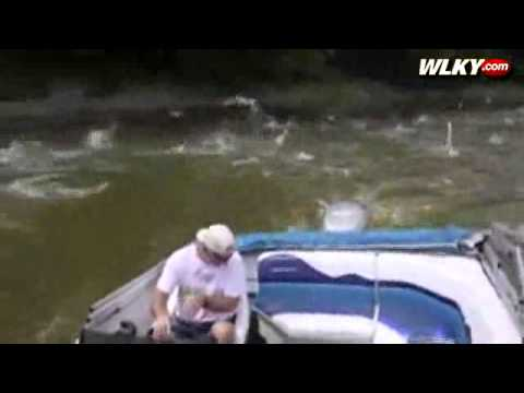Caught On Camera: Carp Jump Out Of Wabash River
