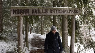 Norra Kvills Nationalpark | Schweden