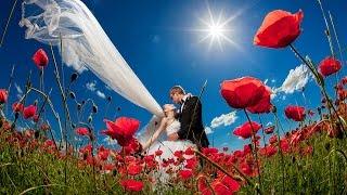 Бесплатный вебинар по свадебной фотосъемке. Ведущий Николай Хорьков.