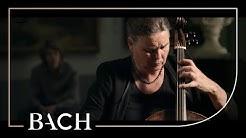 Netherlands Bach Society Youtube