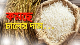 কমছে চালের দাম | Bangla Business News | Business Report | 2019