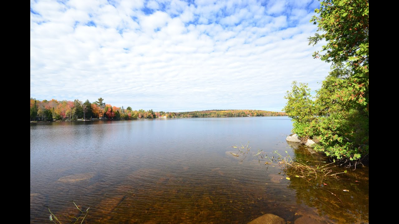 Log sided maine lakefront and waterfront cabin and land for Lakeside cabins for sale