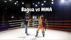 Bagua Kung Fu vs MMA Fight - Commentary And Information From Chinese Social Media