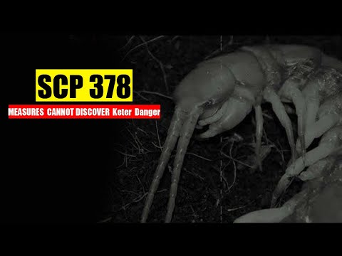 SCP 378 MEASURING MEASURES  CANNOT DISCOVER  Keter  Danger