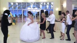 Vallja e pinguinit ne dasmat shqiptare.