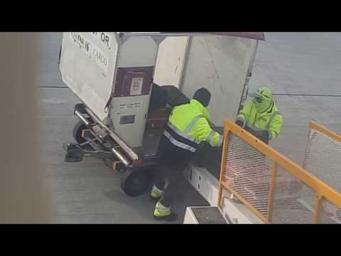 Qatar Airline workers loading luggage in Doha Airport