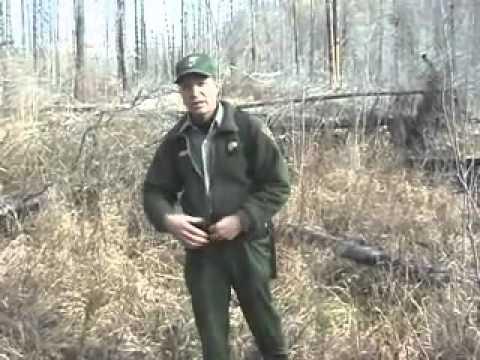 Glacier National Park Bear Safety video