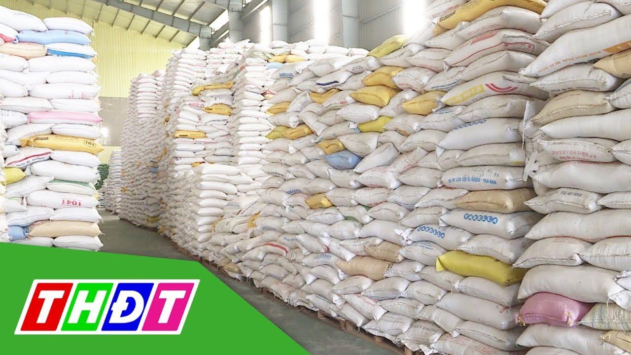 Bộ Công thương kiến nghị Chính phủ cho xuất khẩu gạo trở lại | THDT