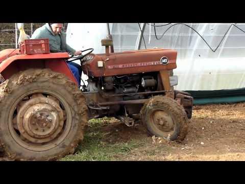 RSG 165 VIEUX MASSEY grand
