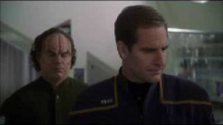 Phlox and Archer explains what