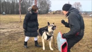 вео Гай и Г.Сафронова, тренинг с О Макаровым