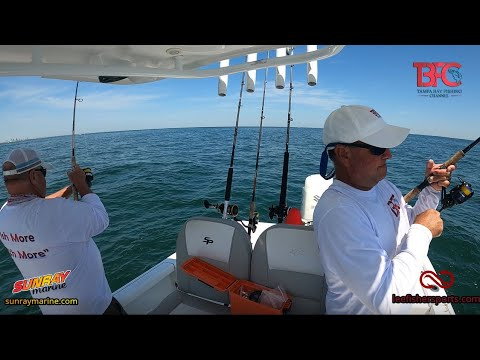 Free Grouper GPS Coordinates Inside Tampa Bay!