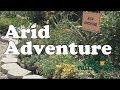 Village Nurseries - Arid Adventure