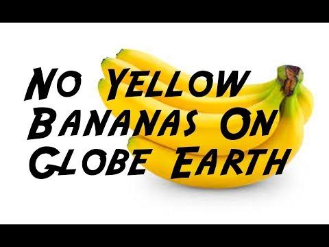 No Yellow Bananas On Globe Earth
