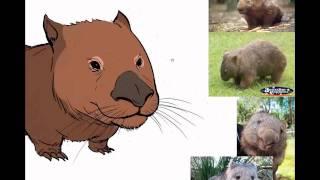 Stylised Creature Painting Tutorial - Wombat.