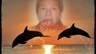 en memoria de OFELIA URIBE DE NAURIZA gregorio garcia durango