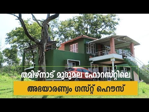 Abhayaranyam Guest House - Stay in Mudumalai Tiger Reserve inside Forest